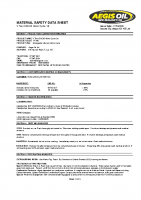 msds V Twin SAE 60 Motorcycle OIl